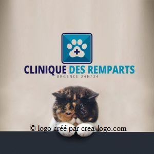 Cette image représente le logo d une clinique veterinaire proposition 1